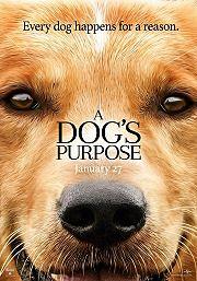 A Dog's Purpose (La Razón de Estar Contigo) 2017