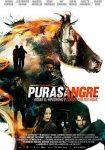 Purasangre (2016)