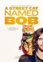Un gato callejero llamado Bob 2016