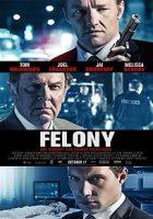 Felony (El rastro del delito) (2013)