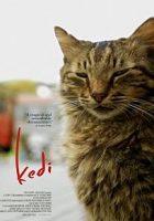 Kedi (Gatos de Estambul) (2016)